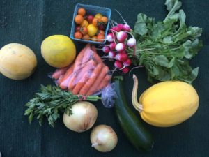CSA: Join our weekly harvest box program