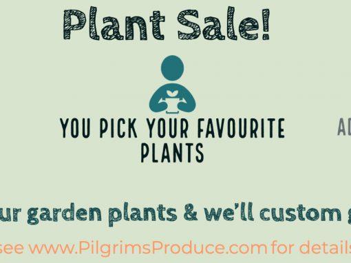 Plants for Sale!